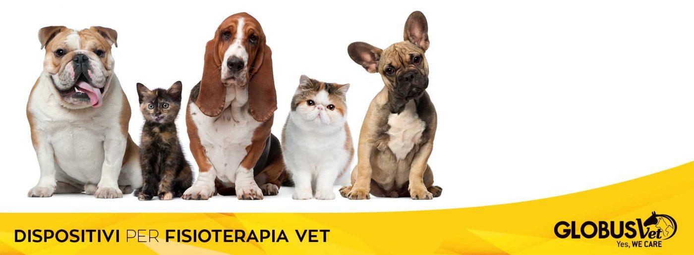 Dispositivi per fisioterapia veterinaria Globus Vet